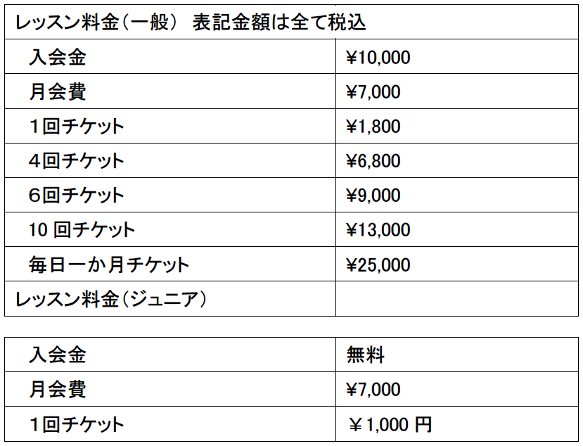 オッティ_price